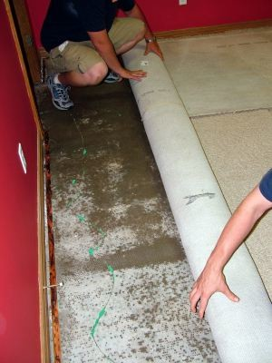 Complete Clean Water Extraction removing water damaged carpet before mold can grow.