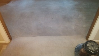 Carpet has not been cleaned in 10 years, San Antonio TX