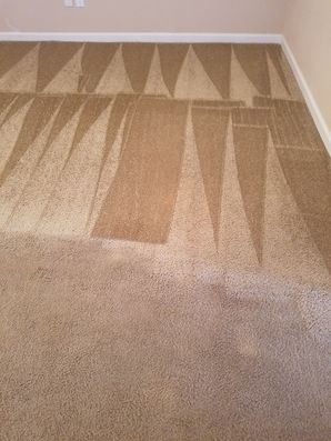 Carpet Cleaning in Converse, TX (1)