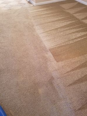 Carpet Cleaning in Converse, TX (2)