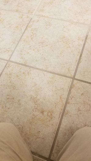 Grout Color Sealing in Cibolo TX (1)