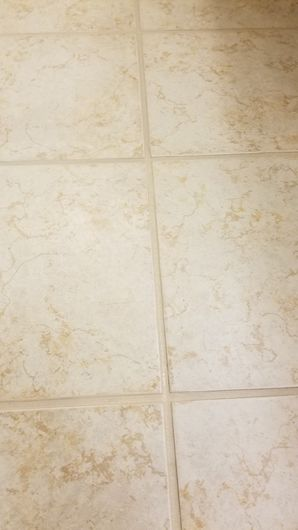 Grout Color Sealing in Cibolo TX (2)