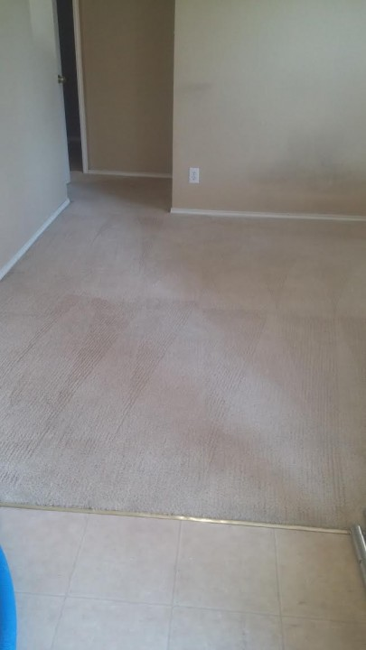 Carpet Stretching and Cleaning in Converse, TX