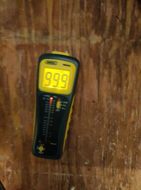 Thermal Image Inspection for Water Damage in San Antonio, TX (4)