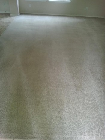 After Carpet Cleaning in San Antonio, TX
