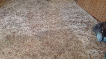 Carpet Cleaning Pleaston, TX