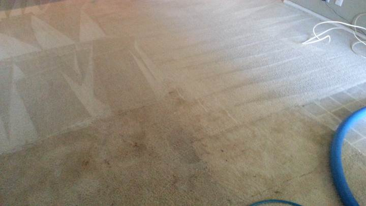 Carpet Cleaning by Complete Clean Water Extraction