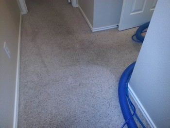 Carpet Cleaning in San Antonio, TX