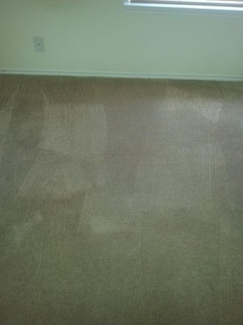 Before and After Mold Stain Removal in Converse, TX