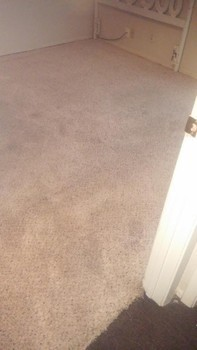 Deep Carpet Cleaning in San Antonio, TX