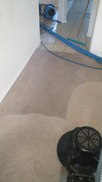 Carpet Restoring in South San Antonio, TX