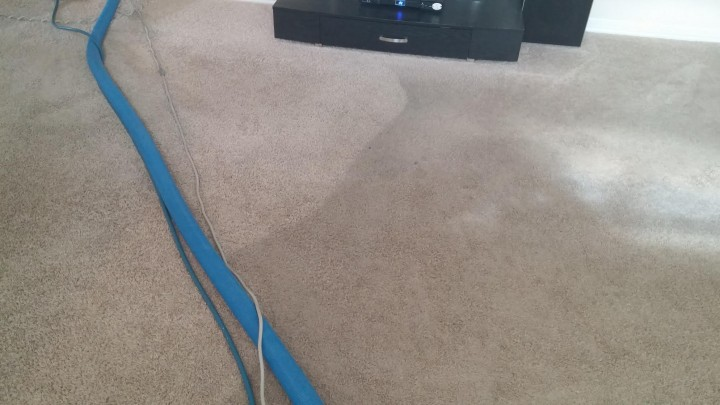 Carpet Cleaning at Wilshire Homes in San Antonio, TX