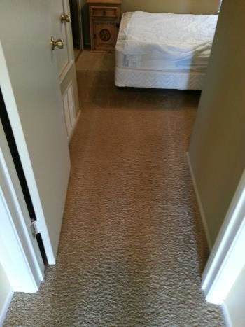 Carpet Cleaning and Repair (Stretching) in New Brunfels, TX