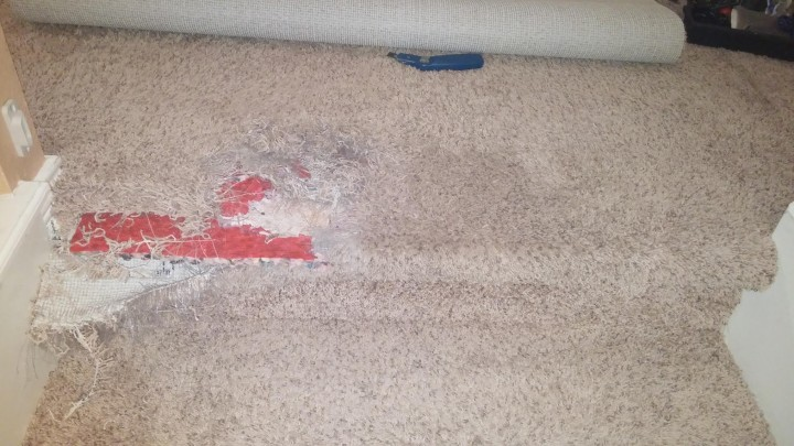 Before Carpet Repair from Pet Damage on Staircase
