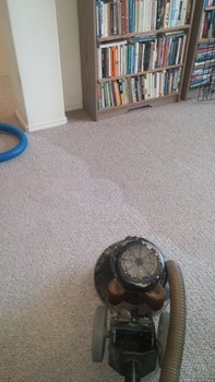 Carpet Stretching and Cleaning Services Schertz, TX