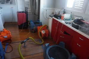 Wood floor Rescue Dry Out in Alamo Heights, TX (5)