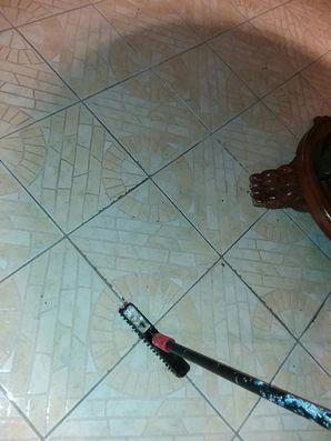 Color Grout Sealing in Windcrest, TX (1)