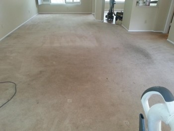 20 Year old Carpet Cleaning in San Antonio
