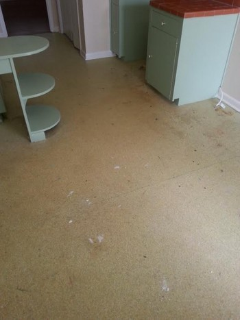 Floor Restoration in San Antonio Tx